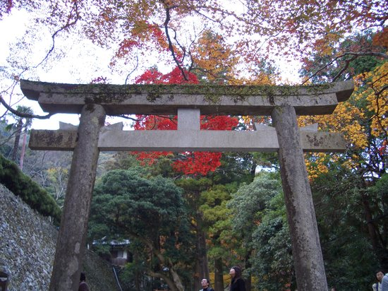 Osaka, Jepang: Shrine gate in fall colors