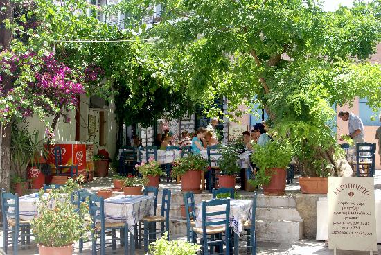taverna-in-the-square.jpg (550×368)