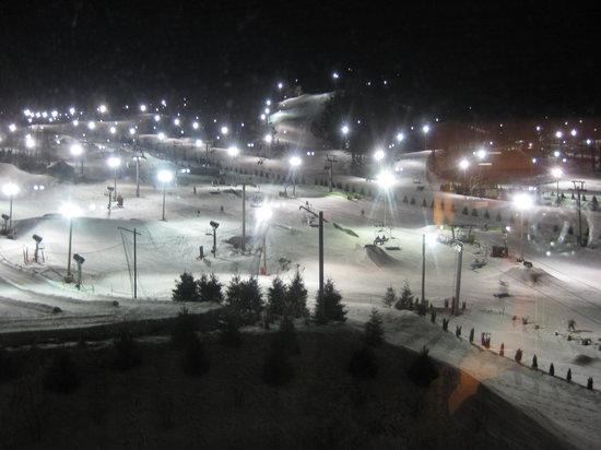 Mountain Resort Ski Bear Pa