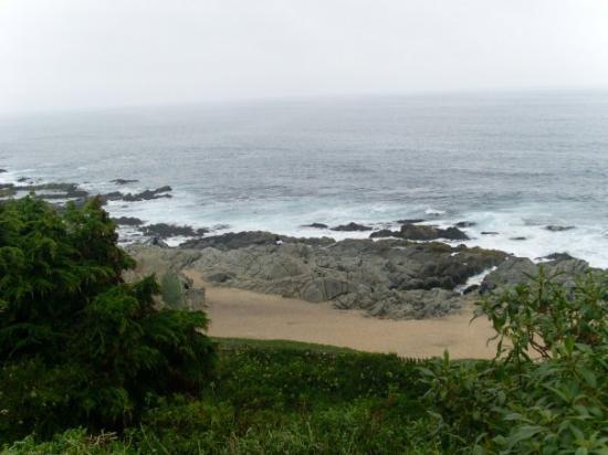 Fotos de Isla Negra