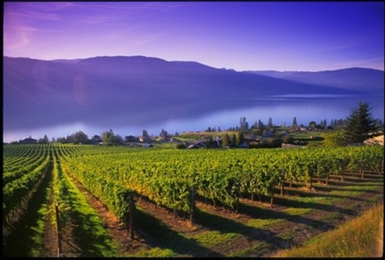 Okanagan valey (Kelowna, copyright by Destination Partners)