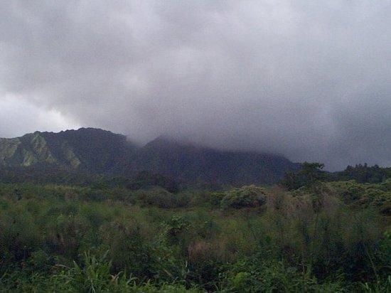 Mt Waialeale Kauai Reviews Of Mt Waialeale TripAdvisor
