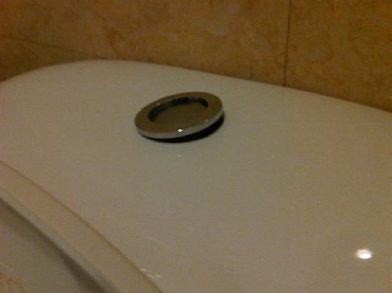 Toilet Flush Button Broken