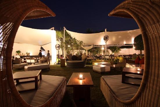 Photos of Nest Angkor Cafe Bar, Siem Reap