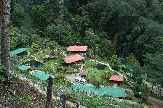Trogon Lodge Picture Of Trogon Lodge San Gerardo De Dota