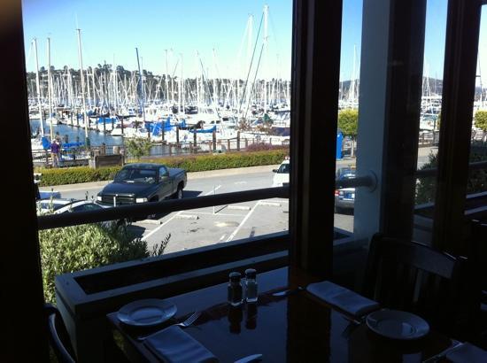 Best Seafood Restaurant Sausalito Ca