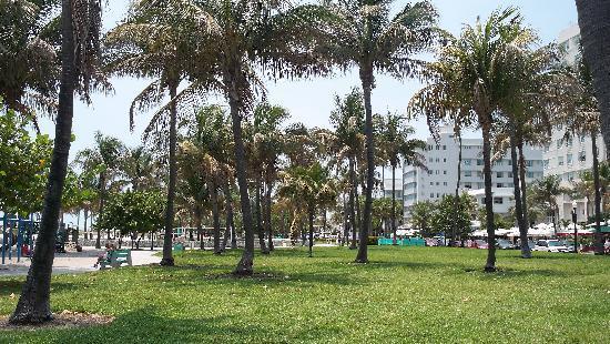 Photos of South Beach, Miami Beach