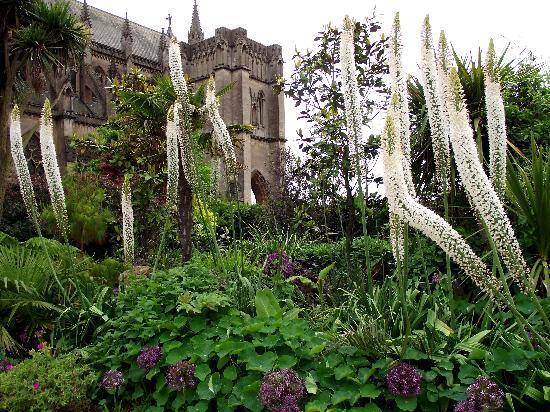 Photos of Arundel Castle & Gardens, Arundel