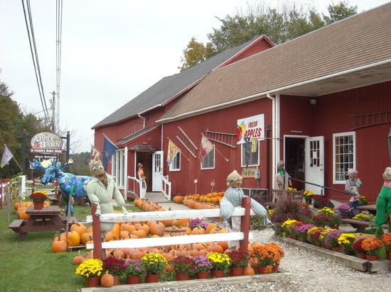 The Apple Barn And Country Bake Shop Bennington VT Top
