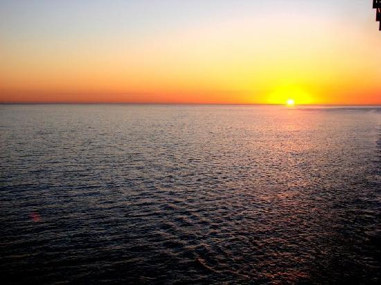 Best Western Corpus Christi Tx Island
