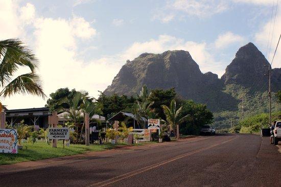 Photos of Anahola Hawaiian Land Farmer's Market, Kauai