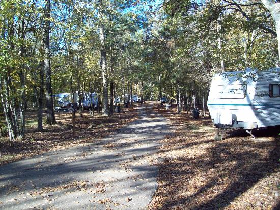 Lake Chicot State Park Cabins