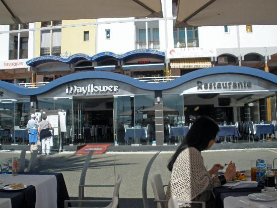 Fish Restaurant Vilamoura Marina