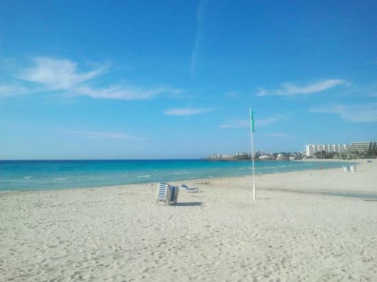 bild von protur sa coma playa hotel