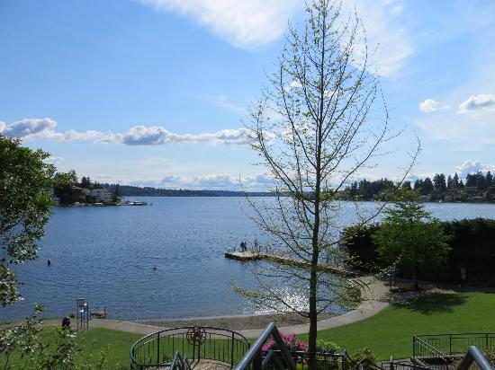 Meydenbauer Beach Park Bellevue Wa Address Attraction
