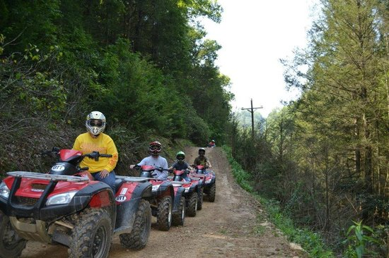 Atv Ing On The Hatfield Mccoy Trail Review Of Wv Atv Tours Pineville Wv Tripadvisor