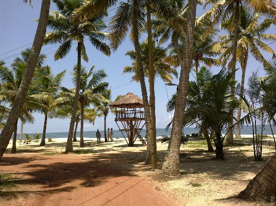 Marari beach in Kerala is the less explored places of India
