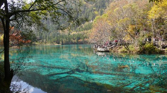 "<a href=""/Attraction_Review-g303770-d319081-Reviews-Jiuzhaigou_World_Heritage_Site-Jiuzhaigou_County_Sichuan.html"">Jiuzhaigou World Heritage Site</a> Foto: 五花海"