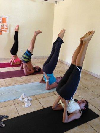 Yoga Utila Shoulderstand In The Morning Class