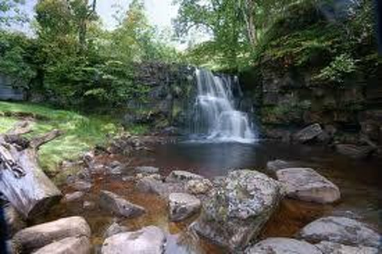 Hamsterley Forest England Address Phone Number Top Rated Attraction Reviews TripAdvisor