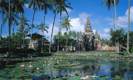 Image Result For Bali Vacation Tripadvisor