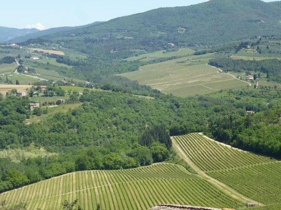 Italy Montaione Tuscany