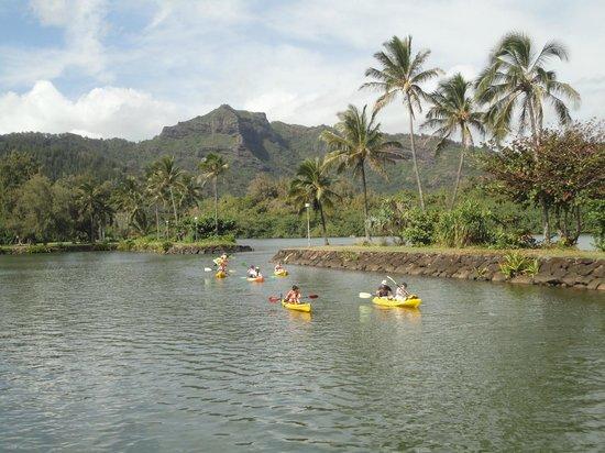 Kayaking India