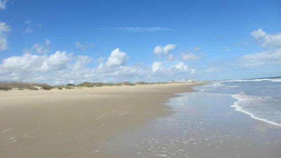 Image result for sandbridge beach