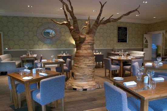 Arbor Restaurant Bournemouth Restaurant Reviews Phone