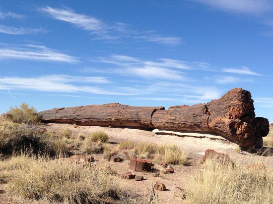 Painted Desert In Arizona Location