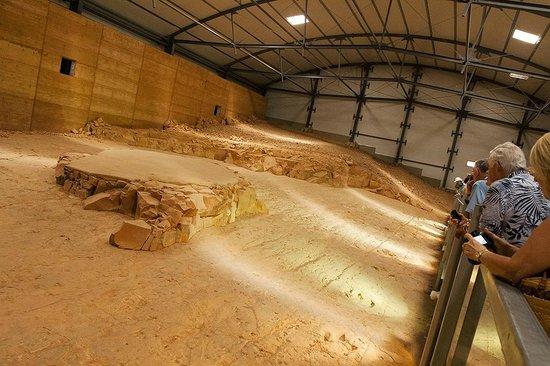 Footprints Of A Carnosaur Hunting Smaller Dinosaurs