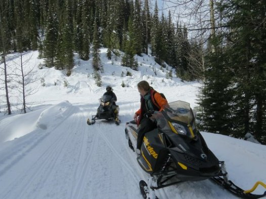 Image result for swan mountain snowmobile
