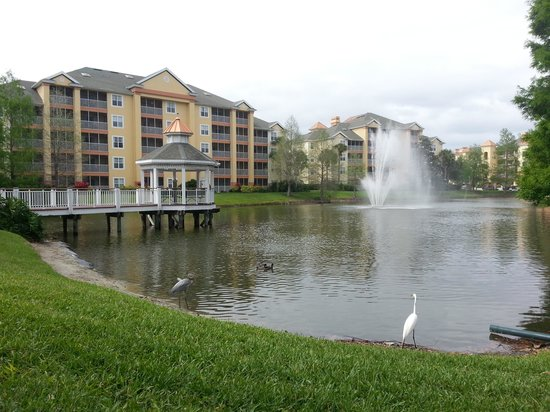 Sheraton Vistana Lakes Section Pics