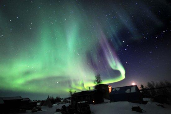 Yellowknife Northern Lights Tours