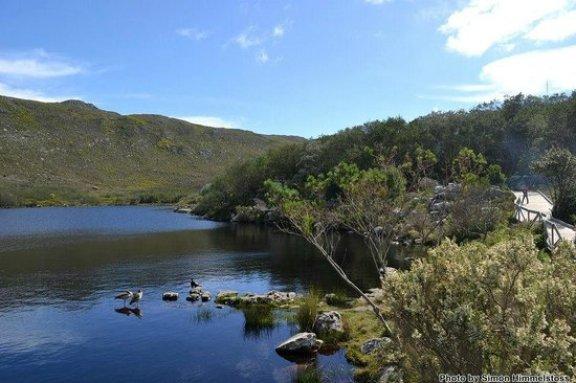 silvermine reserve picnic