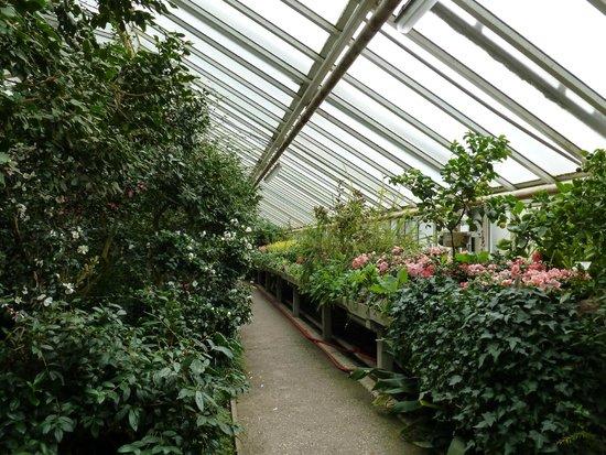 Picture Of Botanischer Garten Berlin