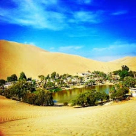 Huacachina Oasi Nel Deserto Sandboarding Picture Of