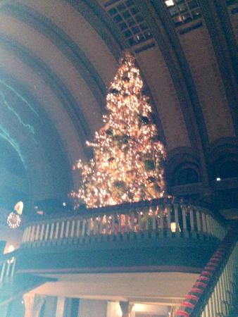 christmas tree at entrance picture of st louis union station
