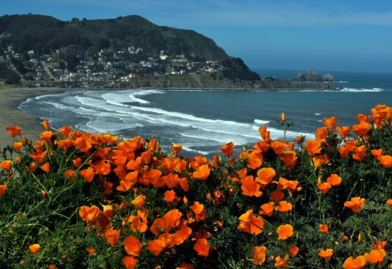 Image result for pacifica ca