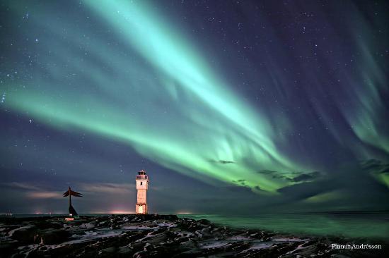 Northern Light Group Llc