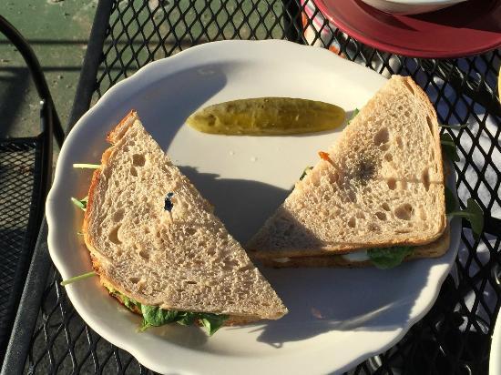 Pea Sandwich Had Twice Stick Boy Kitchen Boone