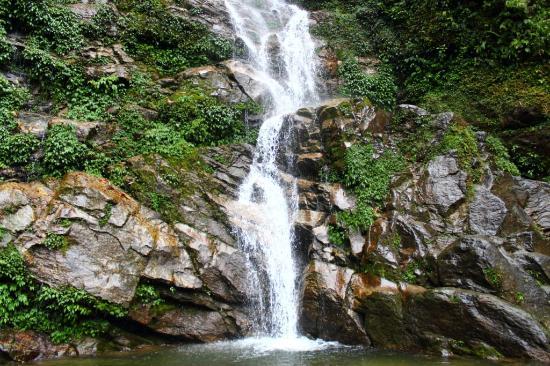 Image result for Rimbi Waterfalls near pelling