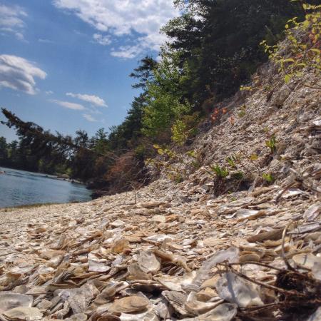 Whaleback Shell Midden State Historic Site Damariscotta