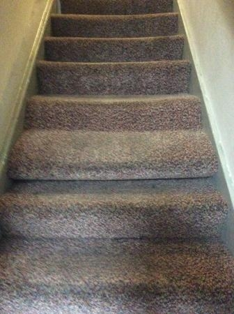 Loose Carpet Picture Of Base Serviced Apartments Duke Street | Loose Carpet On Stairs | Runner | Fixing | Stair Treads | Stair Nosing | Laminate Flooring