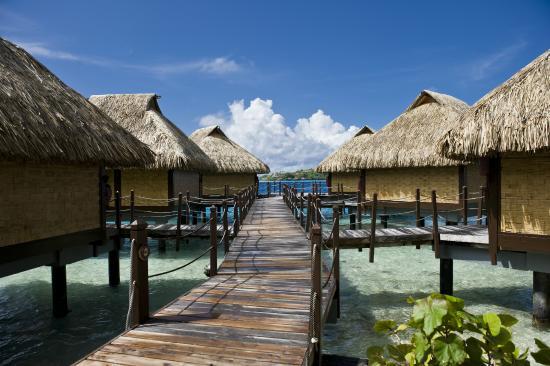 Tahiti Honeymoon Tripadvisor