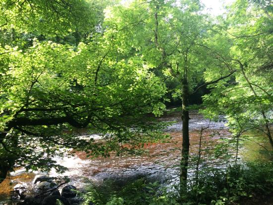 River Roe Picture Of Roe Valley Country Park Limavady Tripadvisor