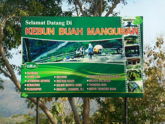Hasil gambar untuk kebun buah mangunan bantul