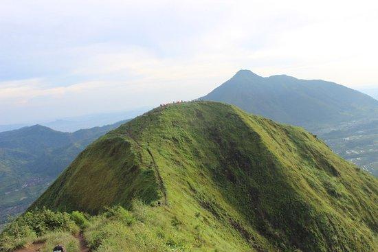 DCID 3 Gunung Pemula