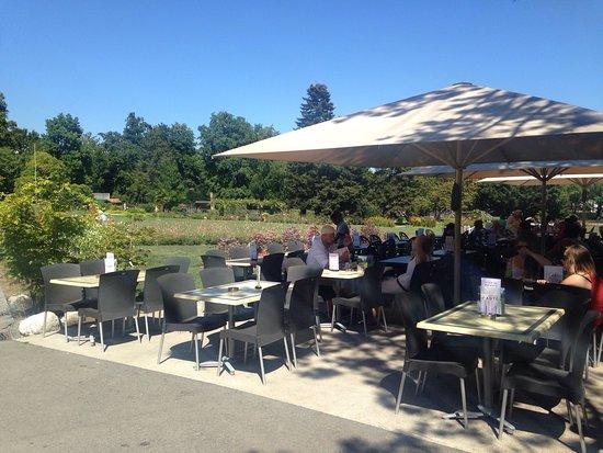 cafeteria du jardin botanique geneva