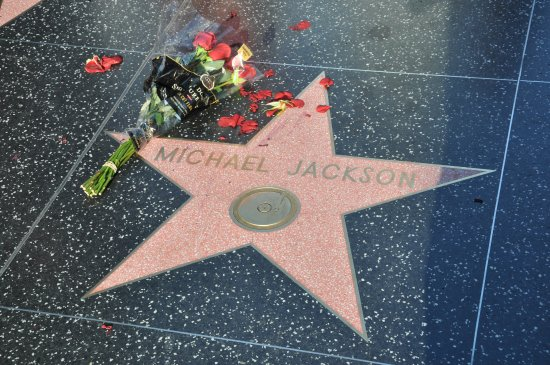 Hollywood Boardwalk Stars